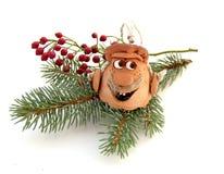 gałęziastej dzwonu futra głowy kształtny drzewo Obrazy Royalty Free