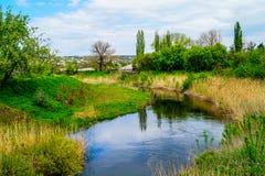 gałęziasty jaskrawy kwiecenia zieleni natury wiosna drzewo Zdjęcie Royalty Free