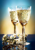 gałęziasty szkieł śliwek wino Obrazy Stock