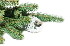 gałęziasty szyszkowy futerka zabawki drzewo Zdjęcie Stock