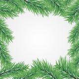 gałęziastych bożych narodzeń ramowy drzewo Obraz Stock
