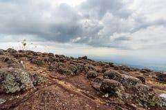 Gałeczki ziemi kamień Fotografia Stock