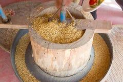 GA BA rice or Germinated brown rice Royalty Free Stock Photo