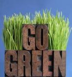 Ga groen gras op blauw Stock Foto's