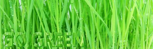 Ga het groene organische concept van de Aardecologie vector illustratie