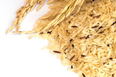 Gaba Rice Background, Germinated brown rice, medicinal propertie Stock Image