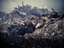 Garbage dump at Maldives Stock Photography