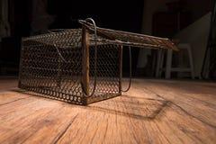 Gabbia arrugginita del ratto Fotografie Stock Libere da Diritti
