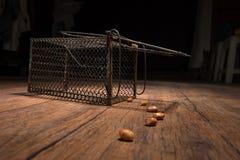 Gabbia arrugginita del ratto Fotografia Stock Libera da Diritti