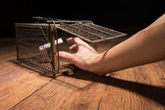 Gabbia arrugginita del ratto Fotografie Stock