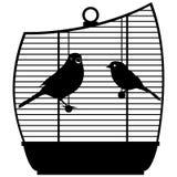 Gabbia con birds-1 Immagine Stock