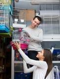 Gabbia d'acquisto delle coppie per l'uccello in negozio Fotografia Stock Libera da Diritti