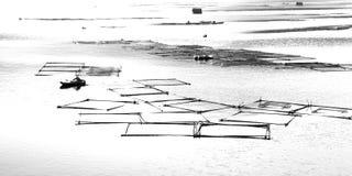 Gabbia dei pesci di abbozzo nel fiume di Lishui Immagini Stock Libere da Diritti