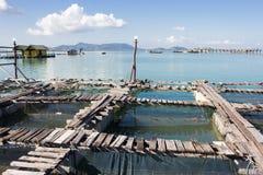 Gabbia del pesce Fotografia Stock Libera da Diritti