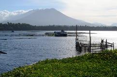 Gabbia del pesce del lago in pieno della questione ambientale delle ninfee che confronta piscicoltura Fotografie Stock