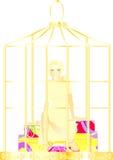 Gabbia dell'oro Immagine Stock Libera da Diritti
