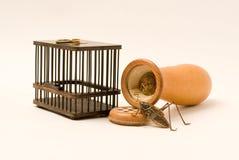 Gabbia della cavalletta e della zucca e della cavalletta fotografia stock libera da diritti