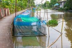Gabbia della rana accanto al modo della passeggiata nella campagna della Tailandia Immagine Stock