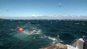 Gabbia della scatola di pesca nel fondo dell'oceano delle onde in Nuova Zelanda stock footage