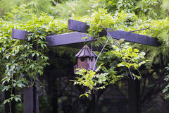 Gabbia per uccelli Fotografia Stock