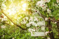 Gabbia per uccelli - decorazione romantica Fotografie Stock Libere da Diritti