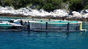 Gabbia rotonda sull'impresa di piscicoltura Fotografia Stock Libera da Diritti