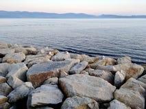 Gabbiani che riposano sopra alcuni massi vicino al mare a Sanxenxo in Galizia Spagna fotografia stock libera da diritti