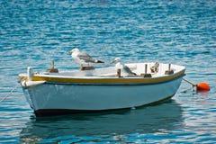 Gabbiani che riposano sulla piccola barca Fotografie Stock Libere da Diritti
