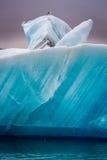 Gabbiani che si siedono sopra l'iceberg, Islanda fotografia stock
