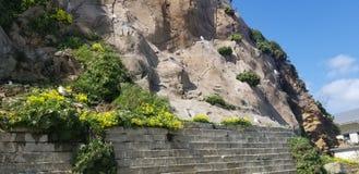 Gabbiani della montagna fotografia stock