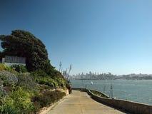 Gabbiani occidentali sul percorso giù al litorale Fotografia Stock