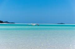 Gabbiano alla spiaggia II di Whitehaven Fotografia Stock Libera da Diritti