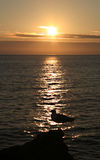 Gabbiano e tramonto Fotografia Stock