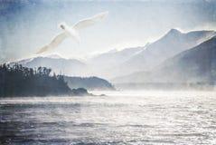 Gabbiano ed il mare Fotografie Stock
