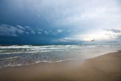 Gabbiano nella tempesta sopra il mare Fotografie Stock Libere da Diritti