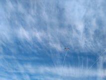 Gabbiano sopra cielo della nuvola della riva di mare immagine stock