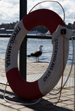 Gabbiano sul lungomare di Stoccolma Fotografie Stock