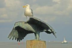 Gabbiano sulla statua del gabbiano fotografia stock libera da diritti