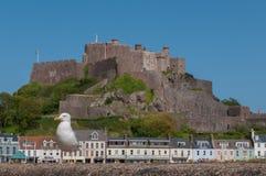 Gabbiano vicino al castello di Mont Orgueil Fotografia Stock Libera da Diritti