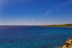 Gabbiano in volo sul mare dell'isola di Carloforte di San Pietro fotografie stock libere da diritti