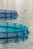 Gabbie per la piscicoltura Fotografia Stock