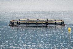 Gabbie per la piscicoltura e la barca Immagini Stock Libere da Diritti