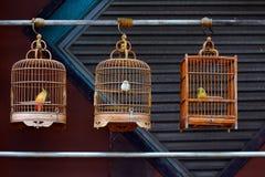 Gabbie per uccelli di legno antiche Fotografia Stock