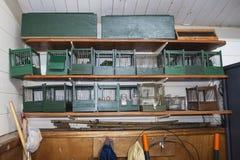 Gabbie per uccelli nella stazione birding fotografia stock libera da diritti