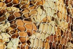 Gabbione Fotografia Stock Libera da Diritti