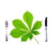 Gabel, Messer und frisches grünes Blatt. Stockfotos