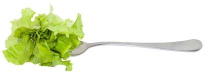 Gabel mit dem festgenagelten frischen grünen Kopfsalat lokalisiert Lizenzfreie Stockfotografie