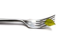 Gabel mit grünem Blatt Stockfoto