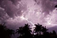 Gabeln des Blitzes Stockbilder
