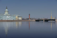 Gabinete del museo del río Neva Russia St Petersburg de las curiosidades Foto de archivo libre de regalías